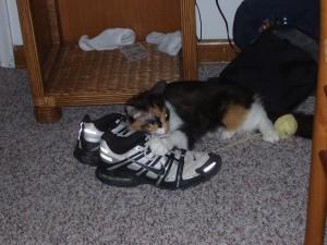 mmmm shoes